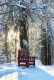 木长凳在冬天 库存照片