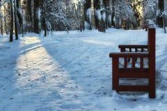 木长凳在冬天 库存图片