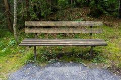 木长凳在森林里 免版税图库摄影