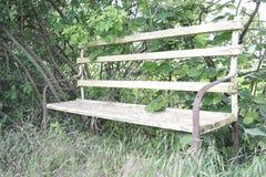 木长凳 免版税图库摄影