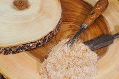 木雕刻师 免版税库存图片