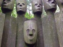 木面孔 免版税库存照片