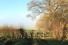 木领域门在一个有薄雾的秋天早晨 免版税库存图片