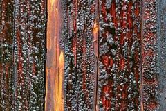 木馏油被浸泡的输电杆 库存照片