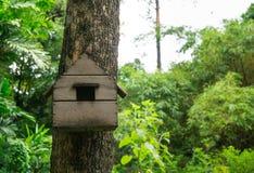 木鸟房子 库存图片