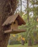 木鸟舍在一棵树称在公园 库存照片
