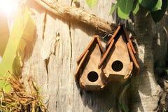 木鸟舍在有温暖的轻的火光的庭院里 免版税图库摄影