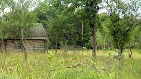 木,被放弃的房子 库存照片