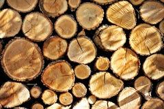 木头为冬天 库存图片