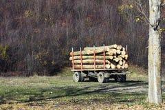 木头为冬天 免版税图库摄影