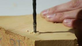 木钻位钻木头 股票视频