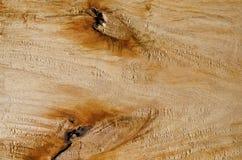 木头和两疣 免版税库存图片