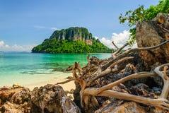 木头和岩石在海滩在逃出克隆岛附近 库存图片