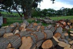 木头和木柴 库存照片