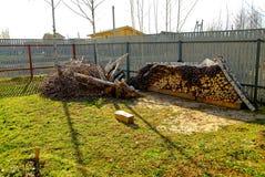 木柴在乡区 图库摄影