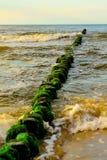 木头在海 免版税库存图片