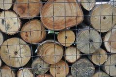木头以水平地被削减的各种各样的大小 免版税图库摄影