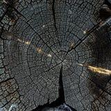 木结构 库存图片