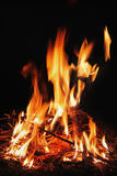 木柴烧红色火焰 库存图片