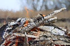 木头燃烧的被烧焦的日志与红色火焰和烟的 库存图片