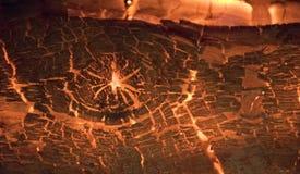 木头特写镜头在从里边火的 库存图片