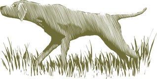 木刻猎鸟犬 向量例证