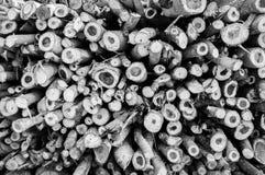 木柴的木材 图库摄影