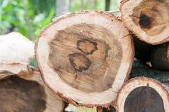 木柴的木材 免版税库存图片