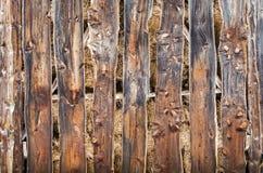 木头的褐色接近的纹理 抽象背景,空的模板 免版税库存照片