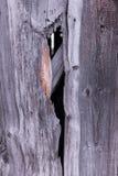 木头的褐色接近的纹理 抽象背景,空的模板 免版税图库摄影