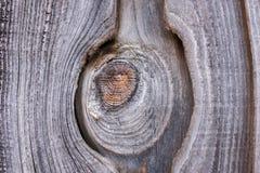 木头的褐色接近的纹理 抽象背景,空的模板 库存照片