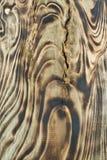 木头的褐色接近的纹理 抽象背景 免版税库存图片