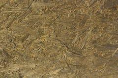 木头的褐色接近的纹理 背景 免版税图库摄影