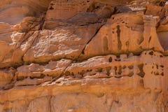 木头的象砂岩的样式纹理  免版税库存照片