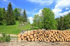 木柴的风景看法 库存照片