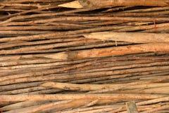 木柴背景的树枝 免版税库存图片