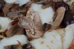 木头被射击的朝鲜蓟橄榄和蘑菇薄饼 图库摄影