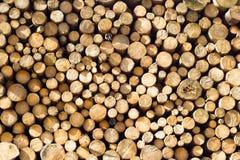 堆木柴 免版税库存图片