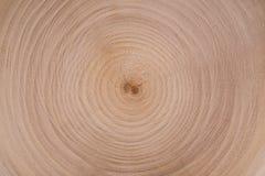 木头裁减盘旋纹理 库存图片