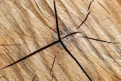木头裁减纹理 免版税库存照片