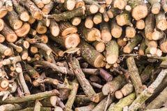 木头记录背景 库存图片