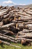 木柴,被堆积的日志 图库摄影
