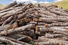 木柴,被堆积的日志 免版税库存照片