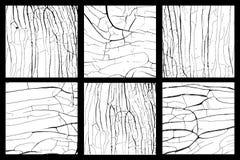 木头disstressed被设置的纹理 库存照片