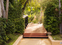 木brige在有光的绿色公园 免版税库存照片