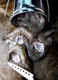 未加工和新鲜的虾或大虾 库存图片