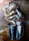未加工和新鲜的虾或大虾 免版税库存照片
