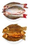 未加工和烤鱼 库存图片