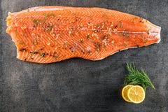 未加工的三文鱼鱼排用柠檬和莳萝在黑板,现代美食术在餐馆 库存照片