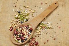 未加工的品种豆和谷物植物木瓢的在大袋背景 库存照片